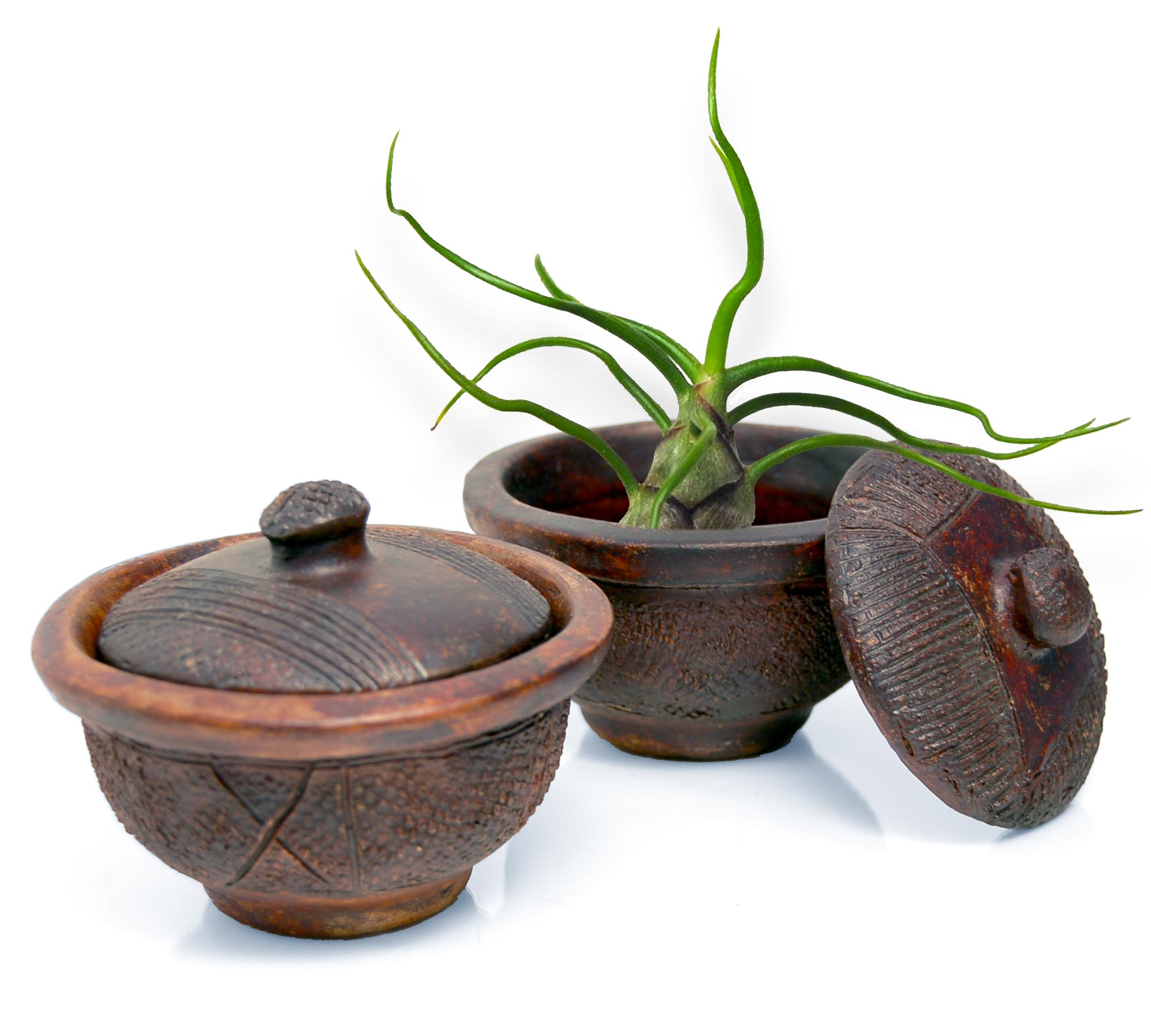 Admirable Mini African Clay Pot Candy Bowl Or Planter For Succulents Air Plants Interior Design Ideas Apansoteloinfo
