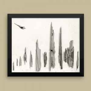 Global-Abstract-Photography-Framed-Print_Petrified_Araba_AfriMod