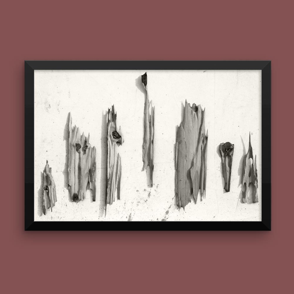 """Petrified"" – framed African photographic print (12×18″) –"