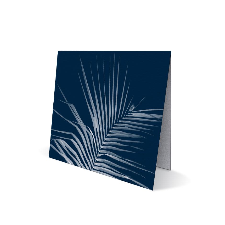 Tropical Palm Leaf Cards (set of 8)