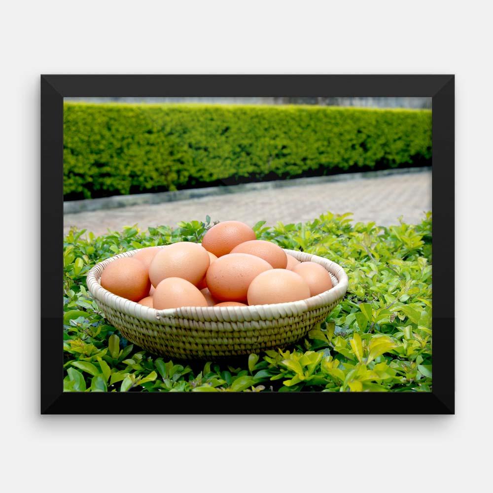 Eggs in a Basket – kitchen wall art (framed photograph)